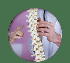 chiropractic circle